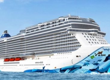 Ncl guarda avanti: i programmi per l'estate 2019