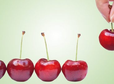 Per i network è l'ora del cherry picking